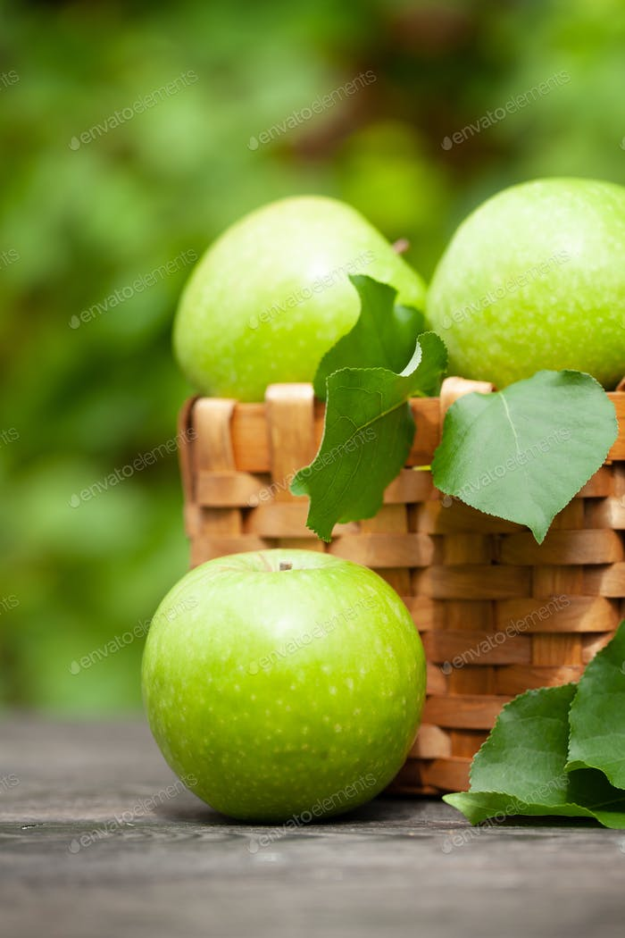 Green apple fruits in basket