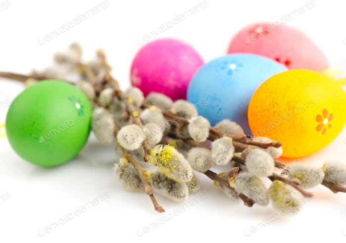 Colorful easter eggs and branches of willow on white background