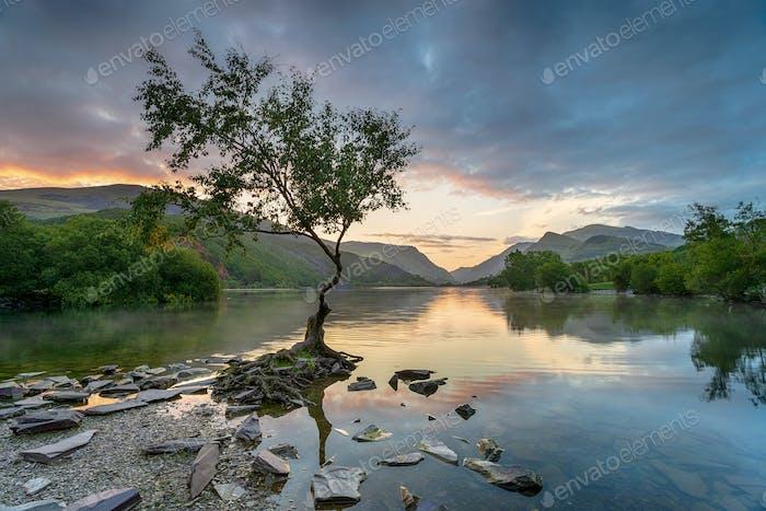 Sonnenaufgang in Llyn Padarn