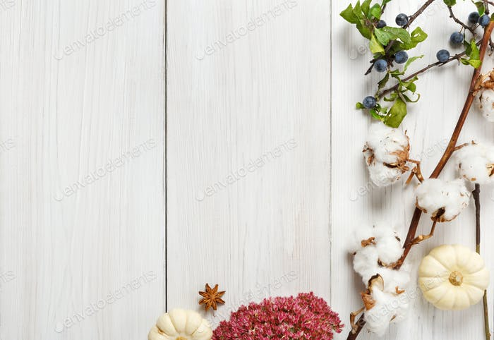 Autumn border of dried flowers on white wood, background