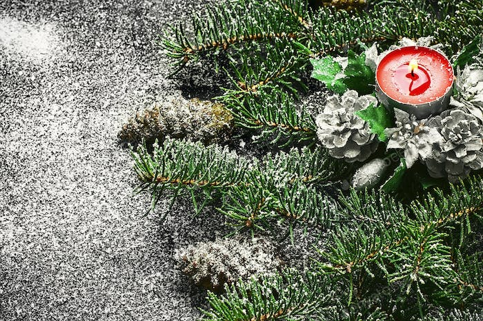 Spruce branches and Christmas candle on dark background