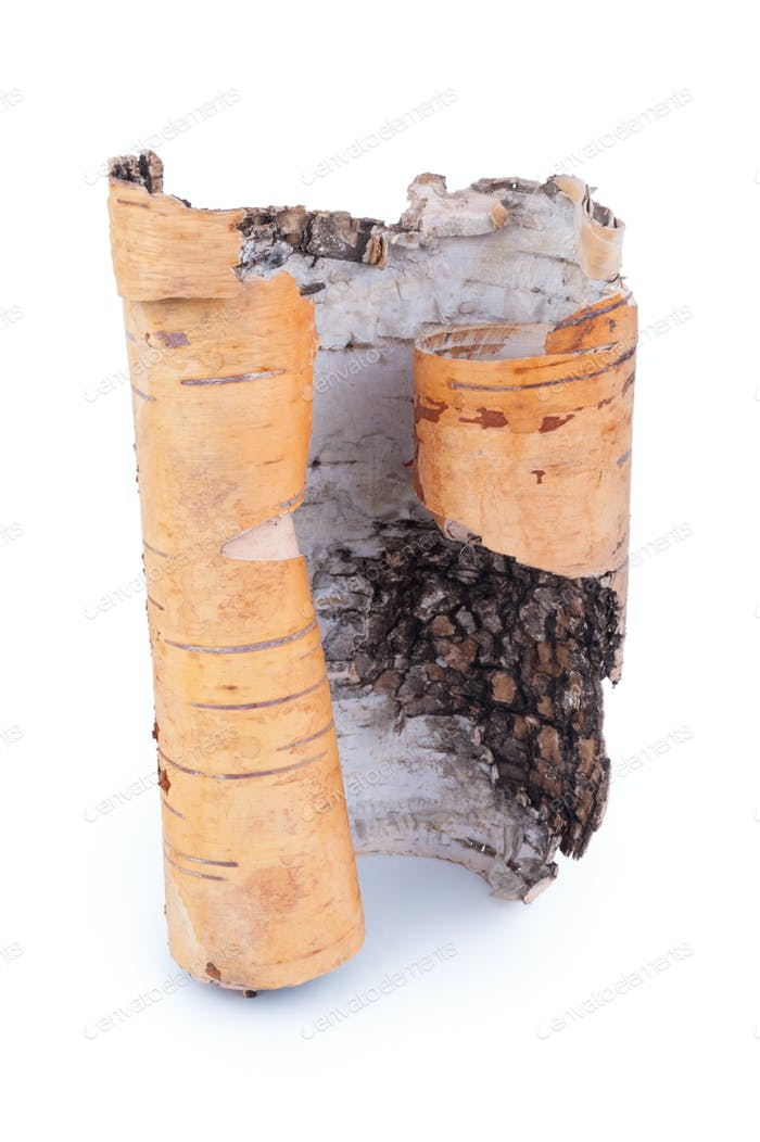 Birch bark on white background