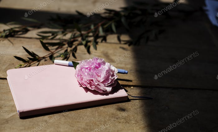 Closeup of pink carnation flower on notebook on wooden table
