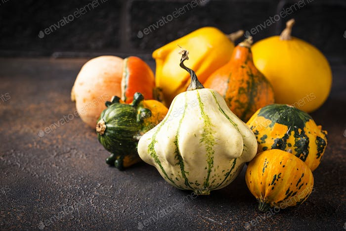 Assortment of decorative colorful pumpkins
