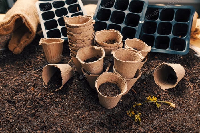 Biodegradable peat pots for organic farming food production