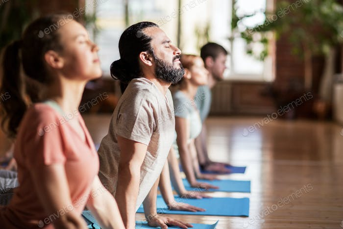 group of people doing yoga dog pose at studio