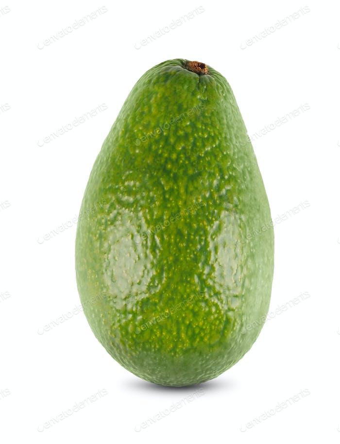 One fresh green avocado closeup isolated on white background