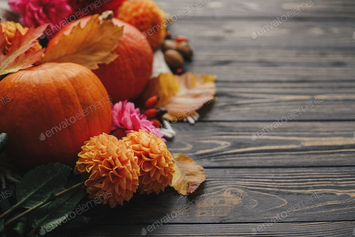 Beautiful autumn composition with space for text. Pumpkins, autumn flowers, berries, leaves on wood