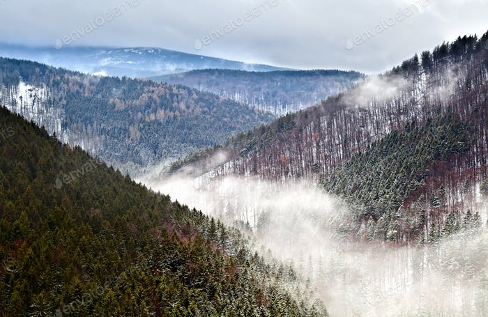 winter in Harz mountains
