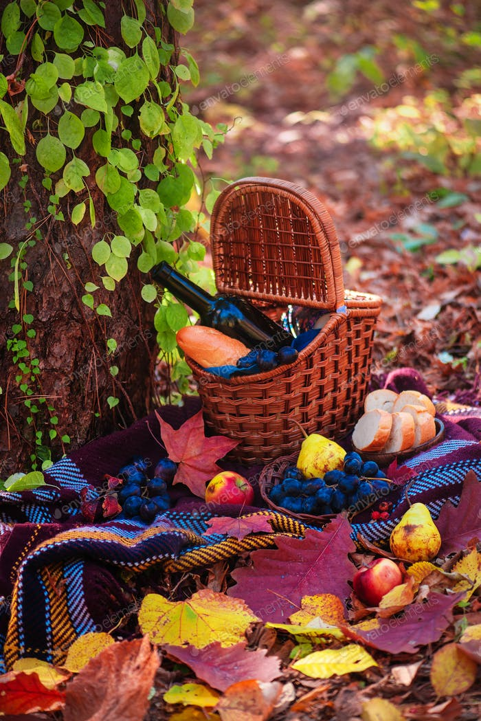 Picnic basket with a wine bottle and baguette in an autumn forest in sunlight with copy space