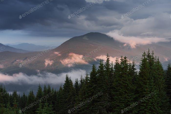 Farbige Sonnenaufgang im bewaldeten Berghang mit Nebel