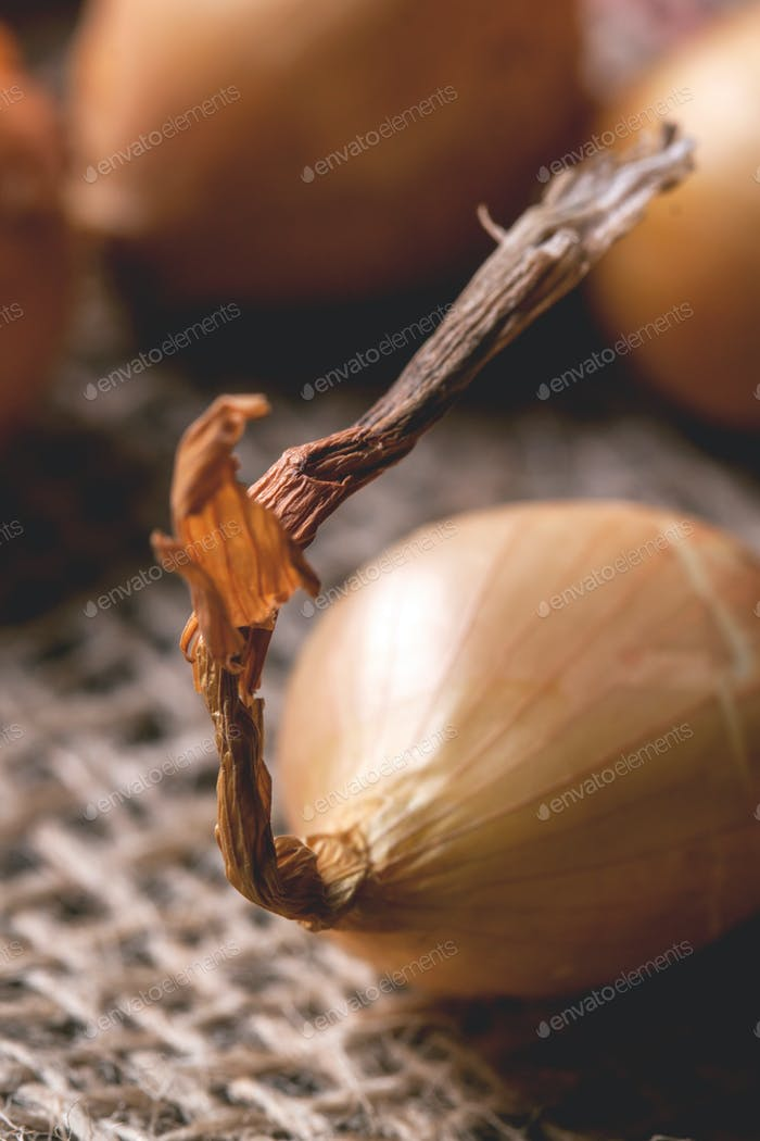 Close up of onion