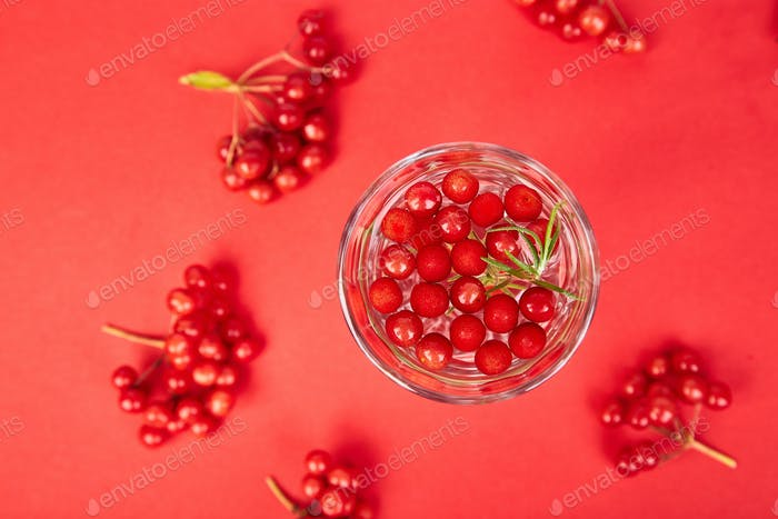 Tasty cold fresh drink, detox water with viburnum berry, rosemary