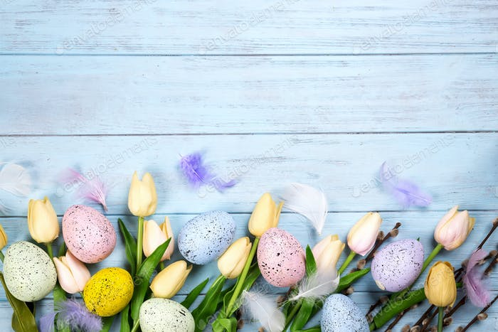 border of spring tulips with branches of the seal and colorful eggs on blue wooden background