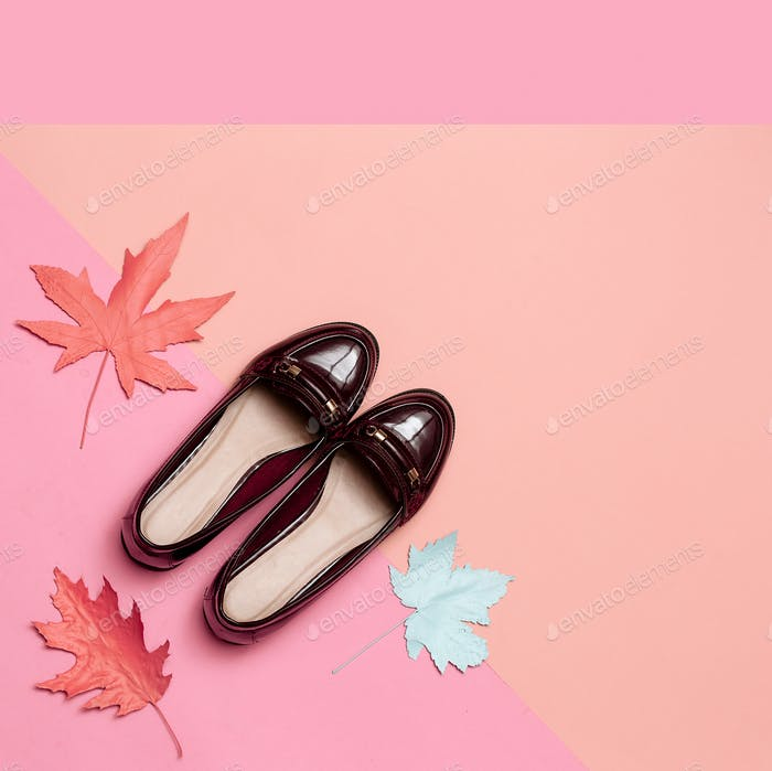 Fashionable vintage shoes for Lady Concept. Minimal design art