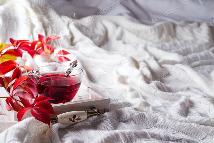 Hot healthy rose tea on wooden tray with autumn fallen leaves on knitted warm woolen blanket