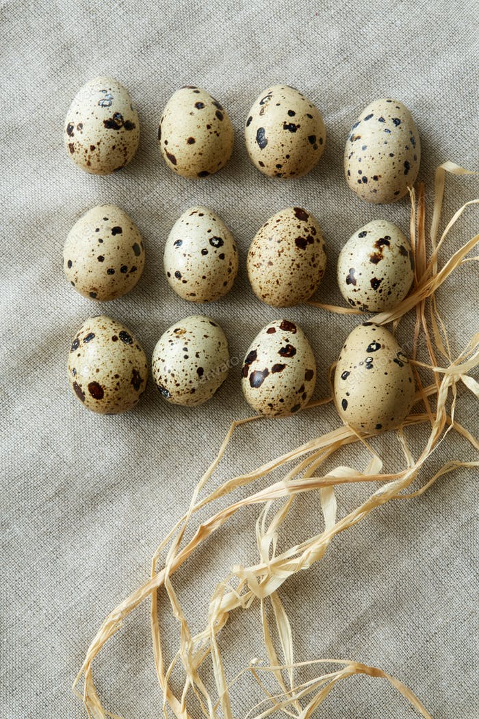 Some rows of quail eggs on linen fablic background