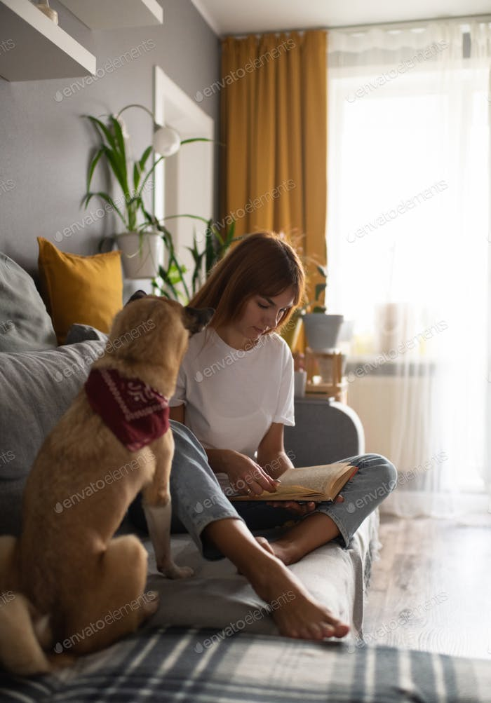 Dog owner reading book at home
