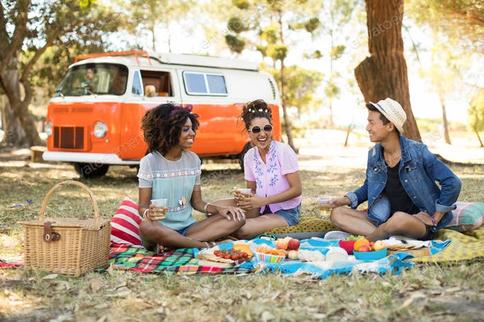 Smiling friends having food while sitting on picnic blanket