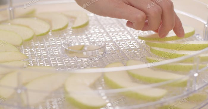 Apple pieces on drying plastic dry for making dry apple