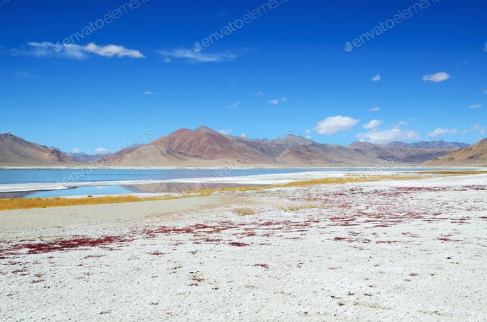 Salt lake in Ladakh
