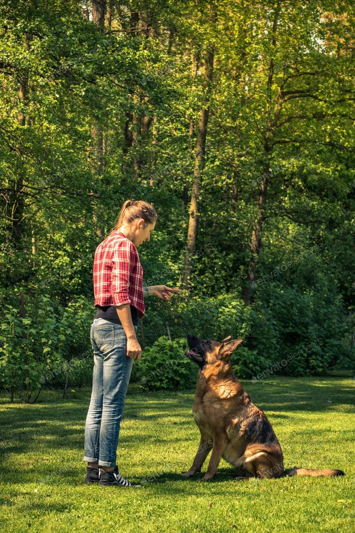Young casual woman teching dog to sit in garden