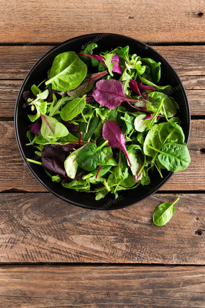 Fresh salad mix of baby spinach, arugula leaves, basil and chard. Italian cuisine