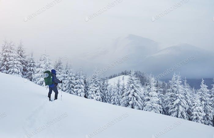 Raquetas de nieve corriendo en nieve en polvo con hermosa luz de salida del sol. Actividades de invierno al aire libre y