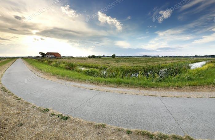 Carretera rural en tierras agrícolas holandesas