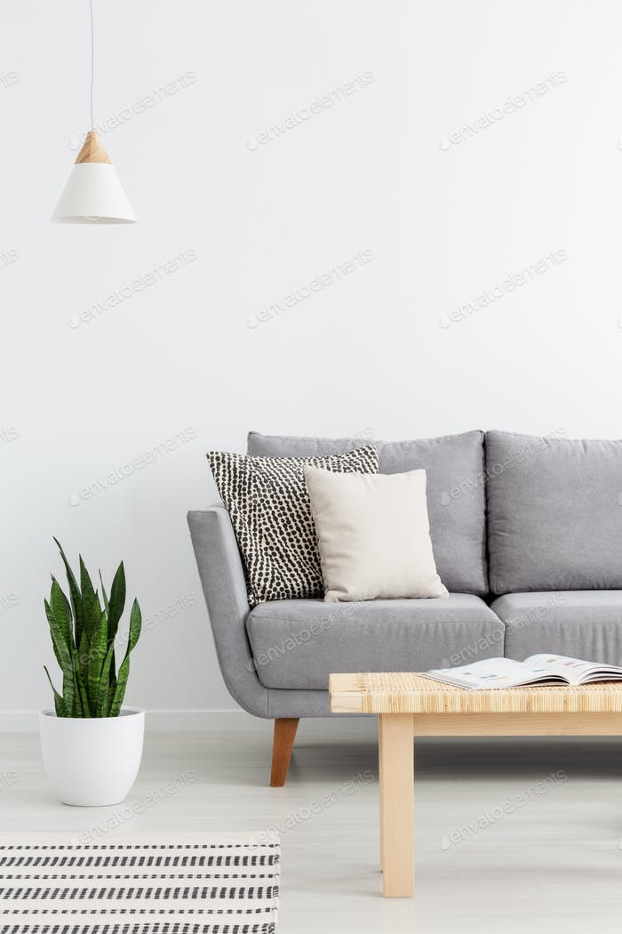 Wooden table in front of grey sofa in white apartment interior w