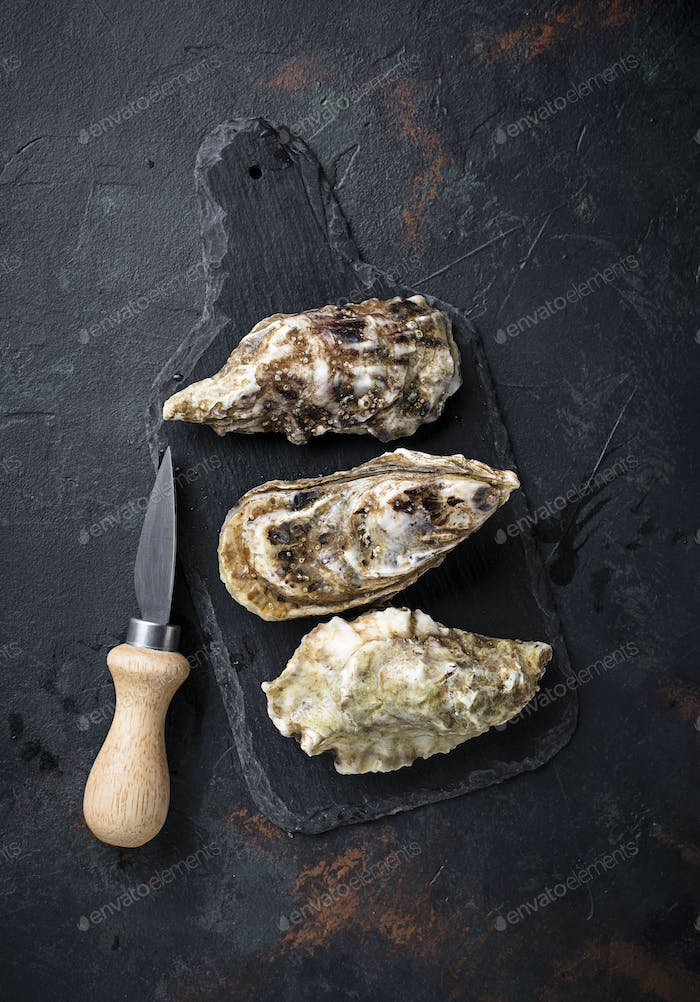 Fresh oysters on dark background