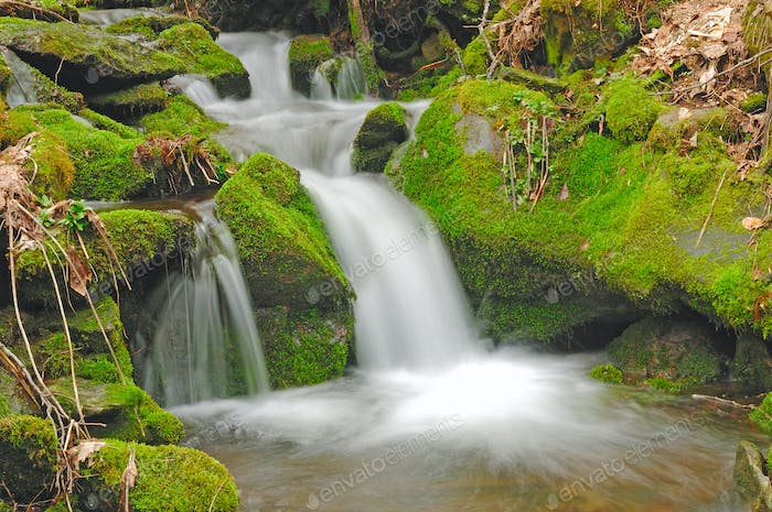 Mountain Stream in Spring