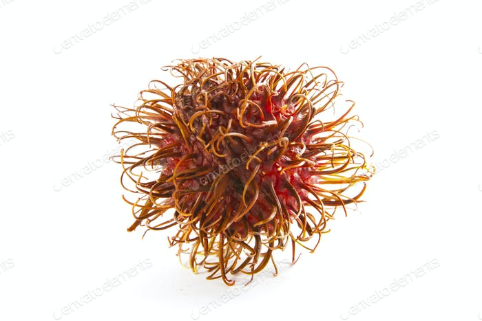 Organic Rambutan Fruit