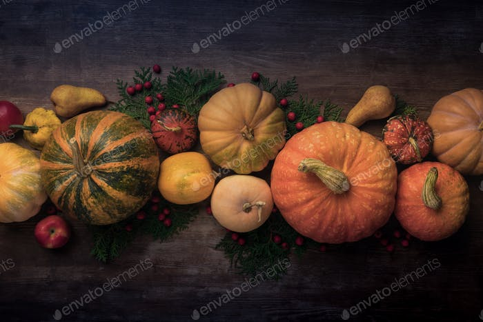 Top view of autumn harvest with pumpkins, gourds and pears on wooden table