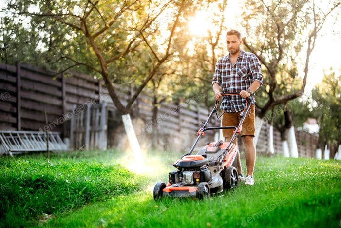 Gardening details, industrial gardener working with lawnmower and cutting grass in backyard