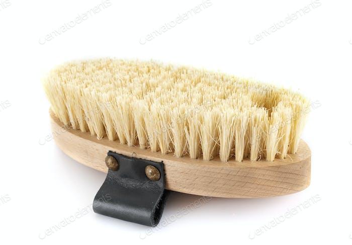 brush for horse