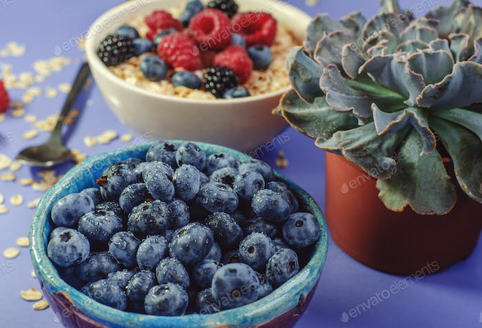 Healthy breakfast. White plate with oatmeal strewn and different berries on a blue background.
