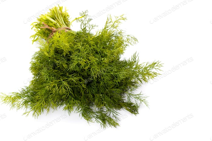 Bunch of fresh dill