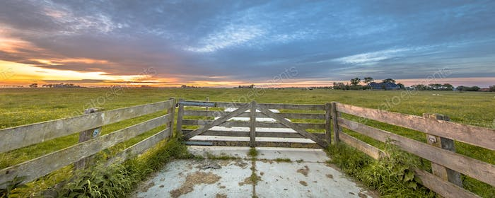 Wooden fence in dairy farmland landscape
