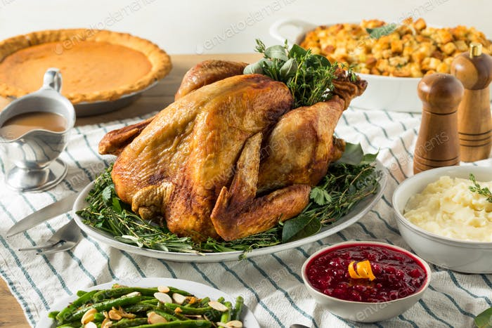 Homemade Thanksgiving Turkey Dinner with Potatoes