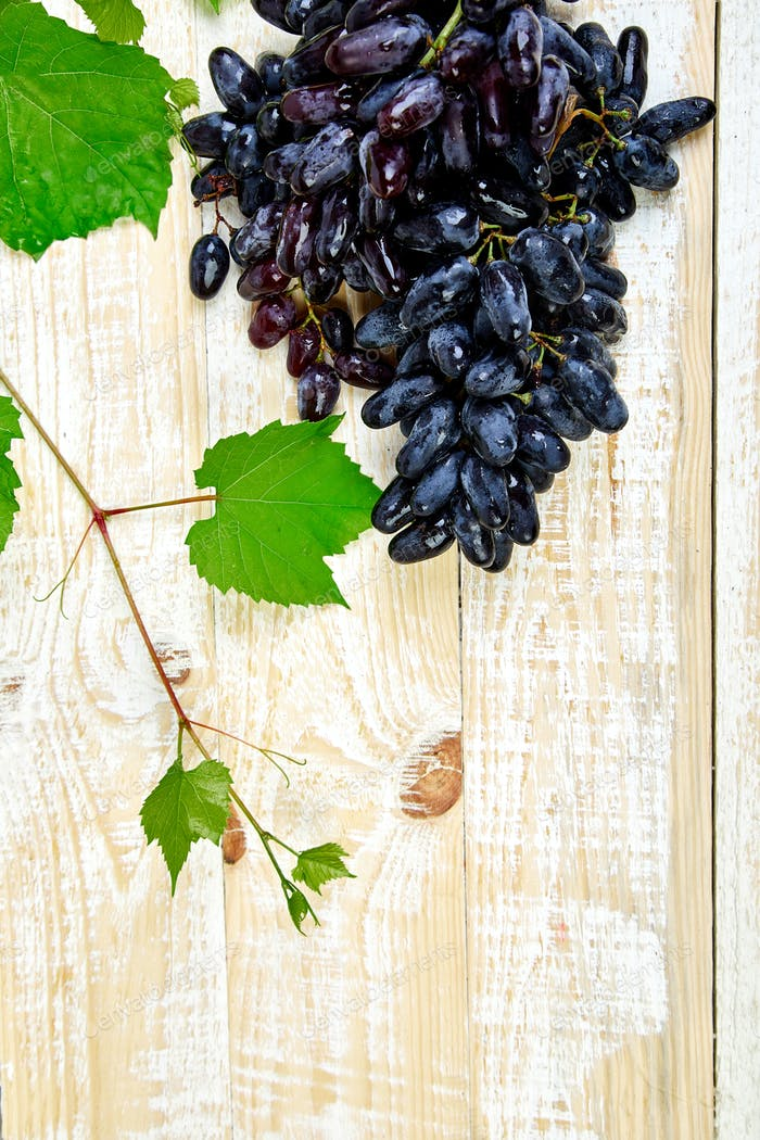Creative layout made of blue or red grape