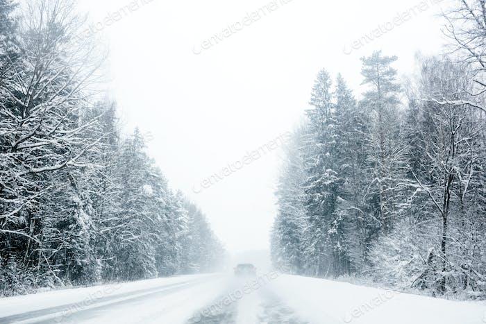 Autofahren durch Waldstraße im Schneesturm