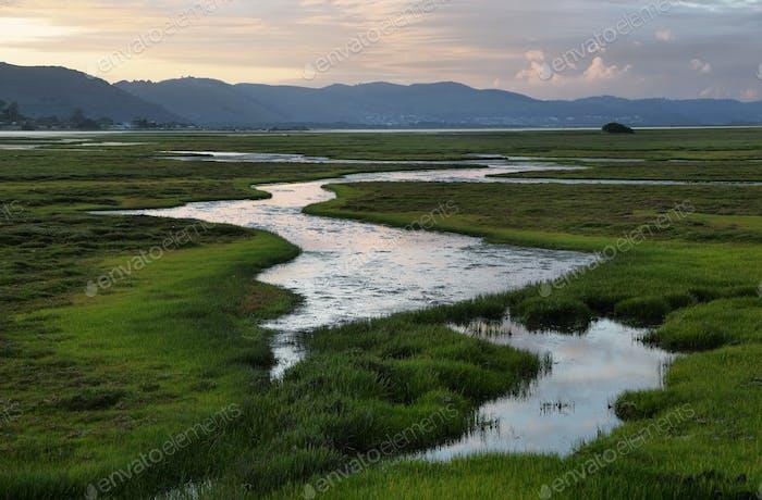 Knysna wetlands at sunset