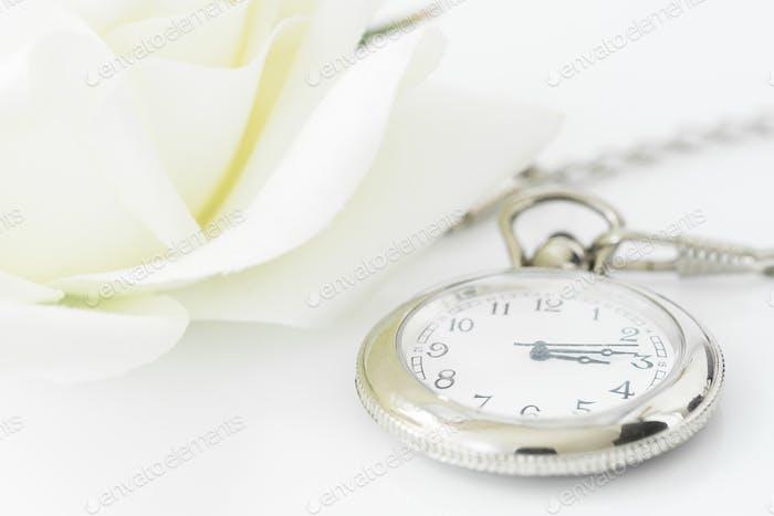 Wedding rings on white background-3