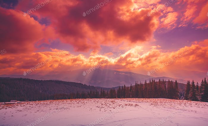 Amazing evening winter landscape