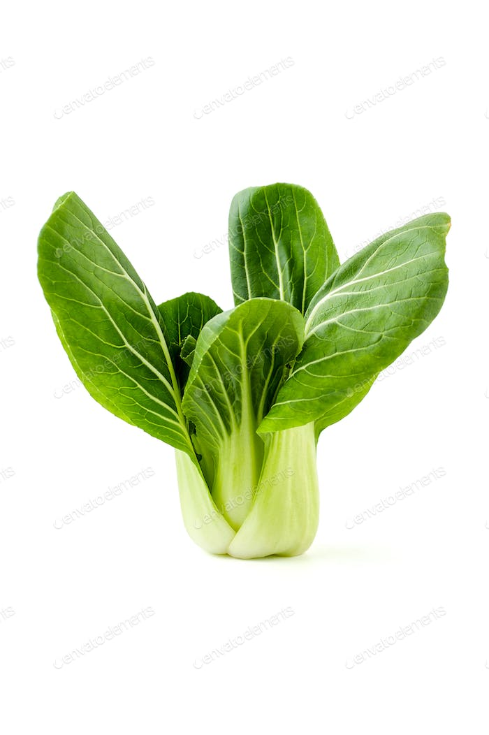 Fresh young Chinese cabbage (Pak-choi) on a clean white backgrou