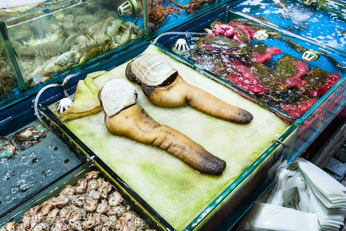 geoduck clams in fish market in Guangzhou city