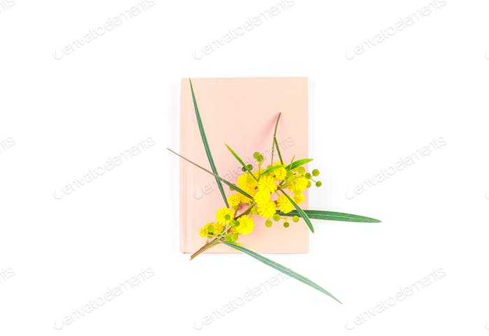 Mimosa and pink notepad on white background