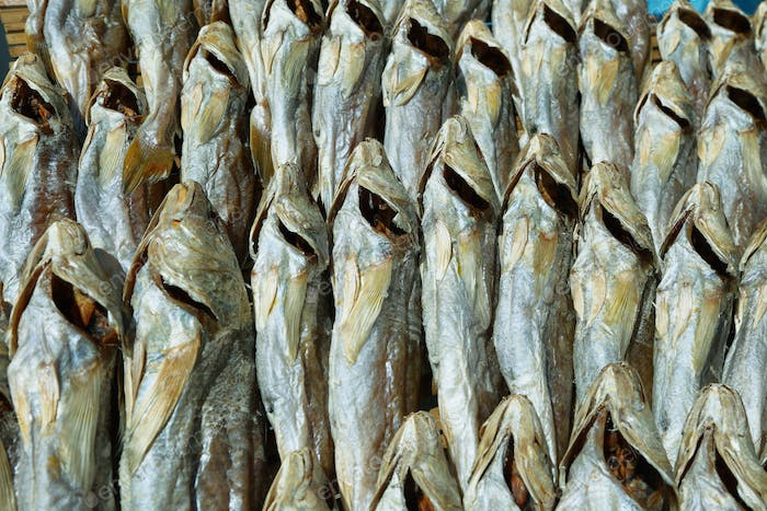 Dried fishes in a market stall of Tai O village