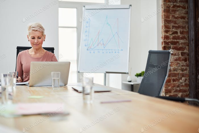 Mature Businesswoman Using Laptop
